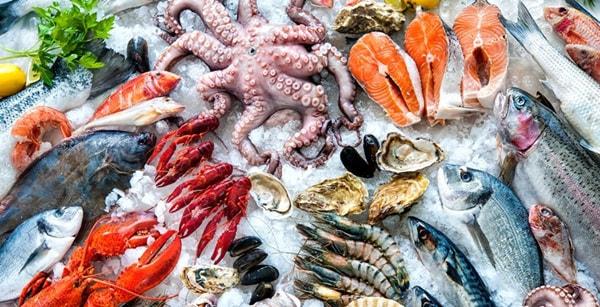 Kinh doanh hải sản đông lạnh