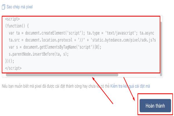 Đoạn code cài đặt Pixel Tik Tok vào Website