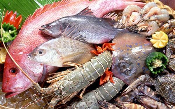 Kinh doanh hải sản online