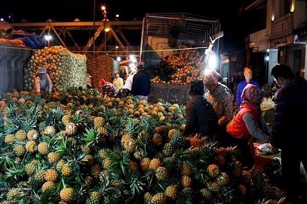 Chợ đầu mới lấy sỉ trái cây Long Biên