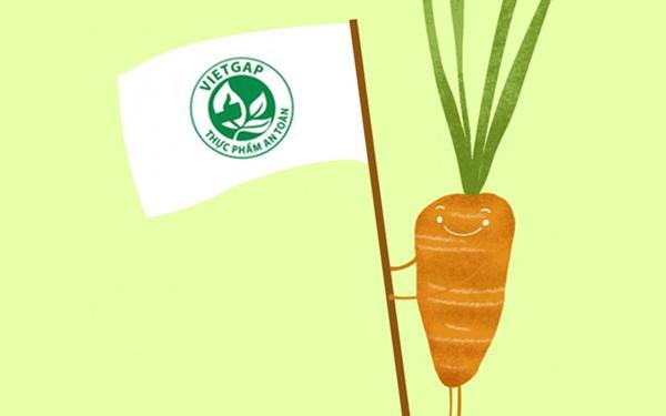 Xin giấy chứng nhận thực phẩm an toàn Vietgap