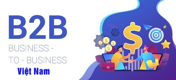 Tổng quan về mô hình B2B ở Việt Nam