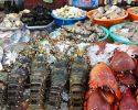 Mô hình kinh doanh hải sản hiệu quả giúp bạn hốt bạc