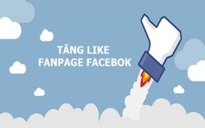 Có nên mua like fanpage hay không? Đâu là nước đi đúng trong kinh doanh?