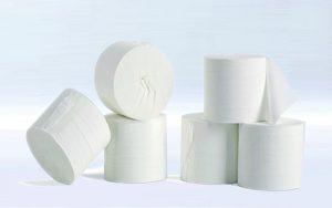 nguồn hàng giấy vệ sinh
