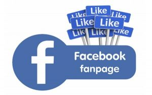 Nuôi Fanpage Facebook