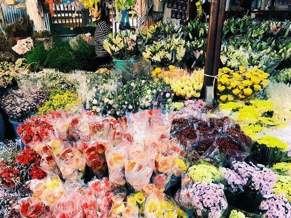 Chợ hoa Mê Linh - nơi cung câp hoa tươi với giá rẻ