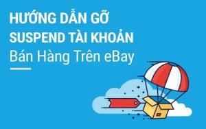 Hướng dẫn cách xử lý hiệu quả khi tài khoản Ebay bị đình chỉ