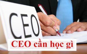 CEO cần học gì