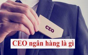 CEO ngân hàng là gì
