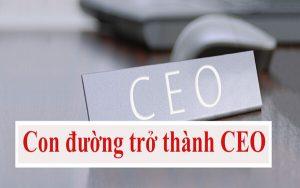Con đường trở thành CEO