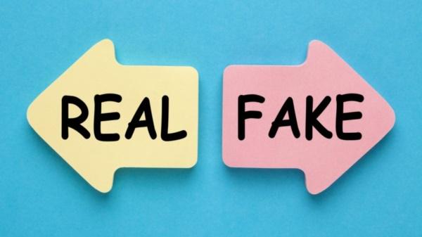 Tiki sẽ là người chịu mọi hoàn toàn trách nhiệm nếu phát hiện Tiki bán hàng fake