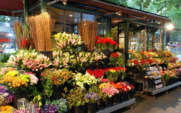 Kinh doanh gì nhanh giàu-Mở cửa hàng bán hoa