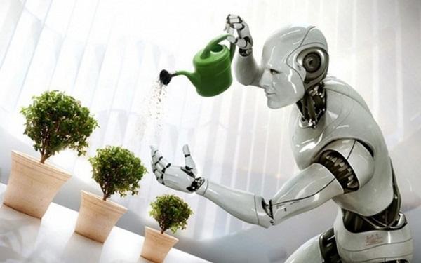 Người máy giúp việc nhà