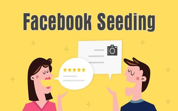 Làm thế nào để Seeding Facebook hiệu quả?