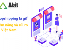 dropshipping-la-gi-0