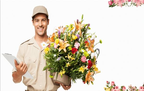 Đẩy đơn điện hoa và quà tặng từ Abit nhanh nhất