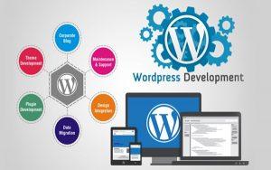Bật mí 5 yếu tố quan trọng trong quy trình phát triển WordPress